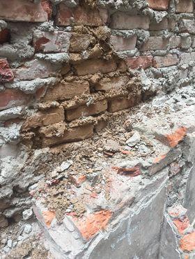 Phong chống mối xây dựng